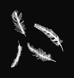 hand draw set of feathers on a black background vector image