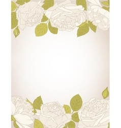 Rose flowers card template vector image