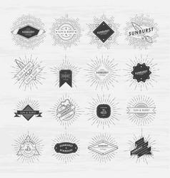circle badges set with sunburst frames vintage vector image