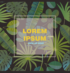 trendy tropical palm leaves background vector image