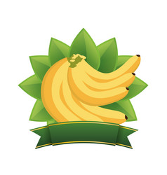 Banana healthy food menu banner vector