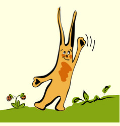 Cartoon cute rabbit on grass vector