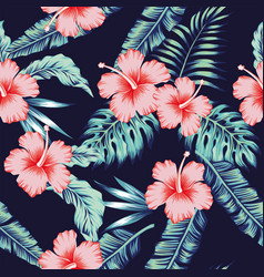 flowers hibiscus pink monstera palm leaves vector image