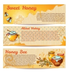 Honey Banner Set vector image