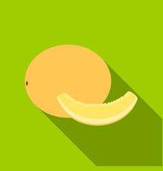 melon icon flat singe fruit icon vector image