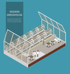 Modern greenhouse isometric concept vector