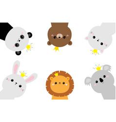panda koala bear lion cat bunny rabbit hare face vector image