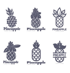 Set of black and white graphic pineapple logo vector