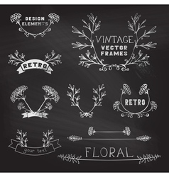 Set of chalk floral design elements vector image