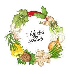 Vegetable circle template with spices vector