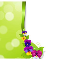 Colorful Pansies Flowers vector image