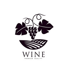 grapevine with ripe grapes and leaves icon vector image vector image