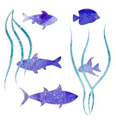 white fish vector image vector image