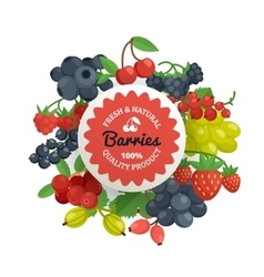 Berries quality flat emblem vector