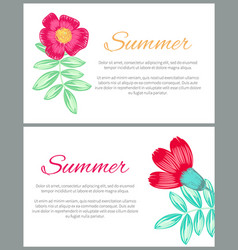 summer theme colorful posters vector image