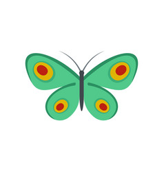 Unknown butterfly icon flat style vector