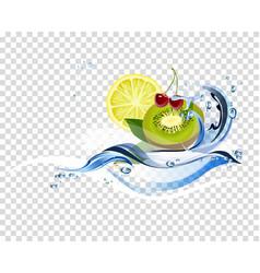 Water fresh fruits vector
