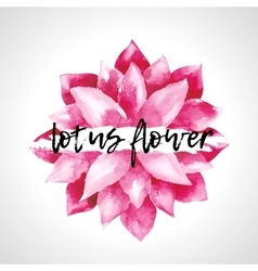 Watercolor pink lotus flowers isolated vector