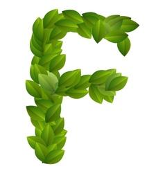 Letter F of green leaves alphabet vector image