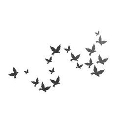bird background template vector image
