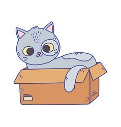 Cute gray cat lying in cardboard box cartoon vector