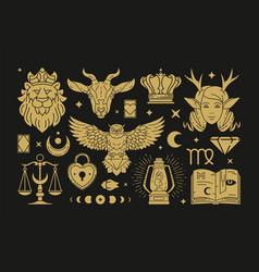 Magic mystical and celestial design vector