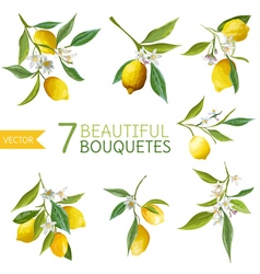 Vintage Lemons Flowers and Leaves Bouquetes vector