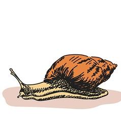 doodleoriginal vector image