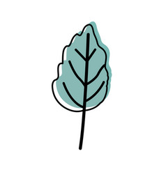 Watercolor silhouette of small wavy leaf plant vector