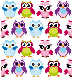 colorful cartoon funny owls vector image