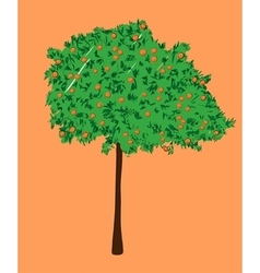 An orange tree vector image