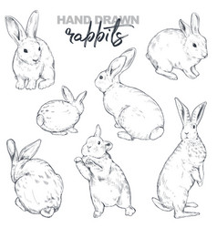 collection hand drawn realistic sketch vector image