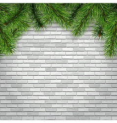 fir tree branches on a white brick wall background vector image