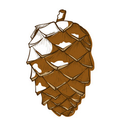 pine cone icon forest and christmas emblem vector image