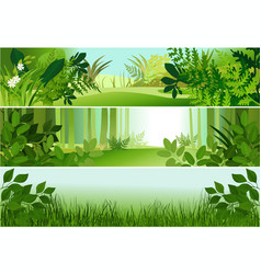 Three forest banners vector