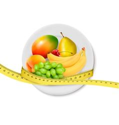 Diet meal Fruit vector image vector image