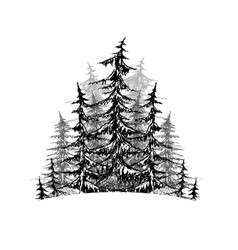 black and white sketch of trees element for logos vector image