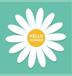 hello summer white daisy chamomile cute flower vector image