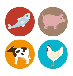 Set amimals butcher products vector