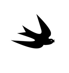 The outline the shadow of a swallow in flight vector