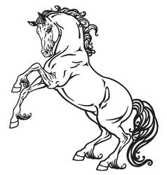 Horse monochrome vector