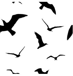 silhouettes seagulls black pattern wall vector image