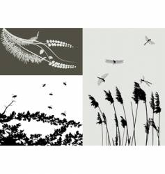 nature grass vector image
