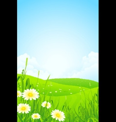 Green Nature Landscape vector image