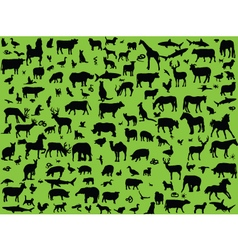 big collection mix animals vector image