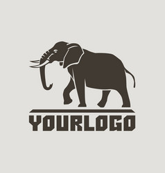 Elephants logo sign pictogram-01 vector