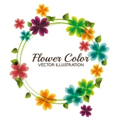 flower color design vector image