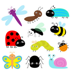 insect icon set lady bug caterpillar butterfly vector image