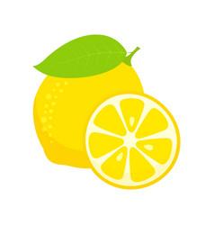 lemon isolated on white background vector image