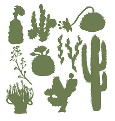 Silhouettes of cacti with flowers isolated vector